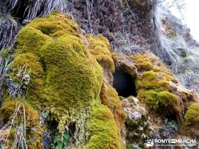 Hoces y cañones del Río Piedra y del Río Gallo -- Laguna Gallocanta - excursiones y senderismo;ma